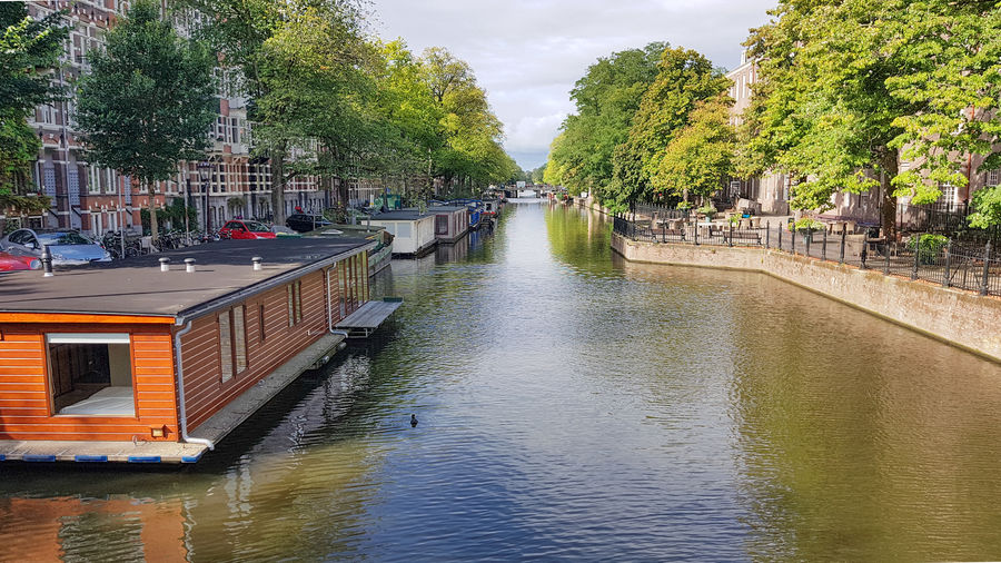 Canal amidst trees in city against sky