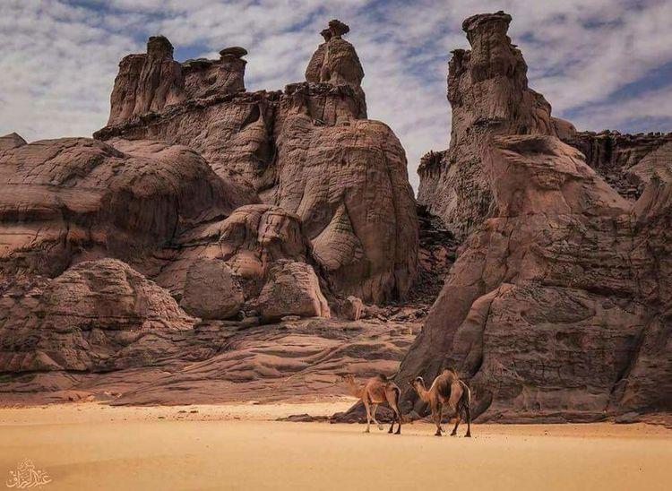 Desert Arid Climate Sand Sky Landscape