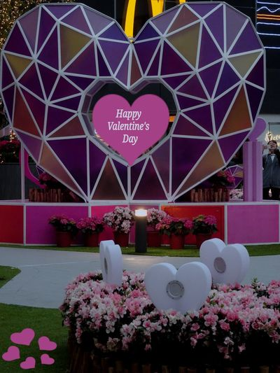 Happy Valentine's day Flower Multi Colored Outdoors Architecture No People Day