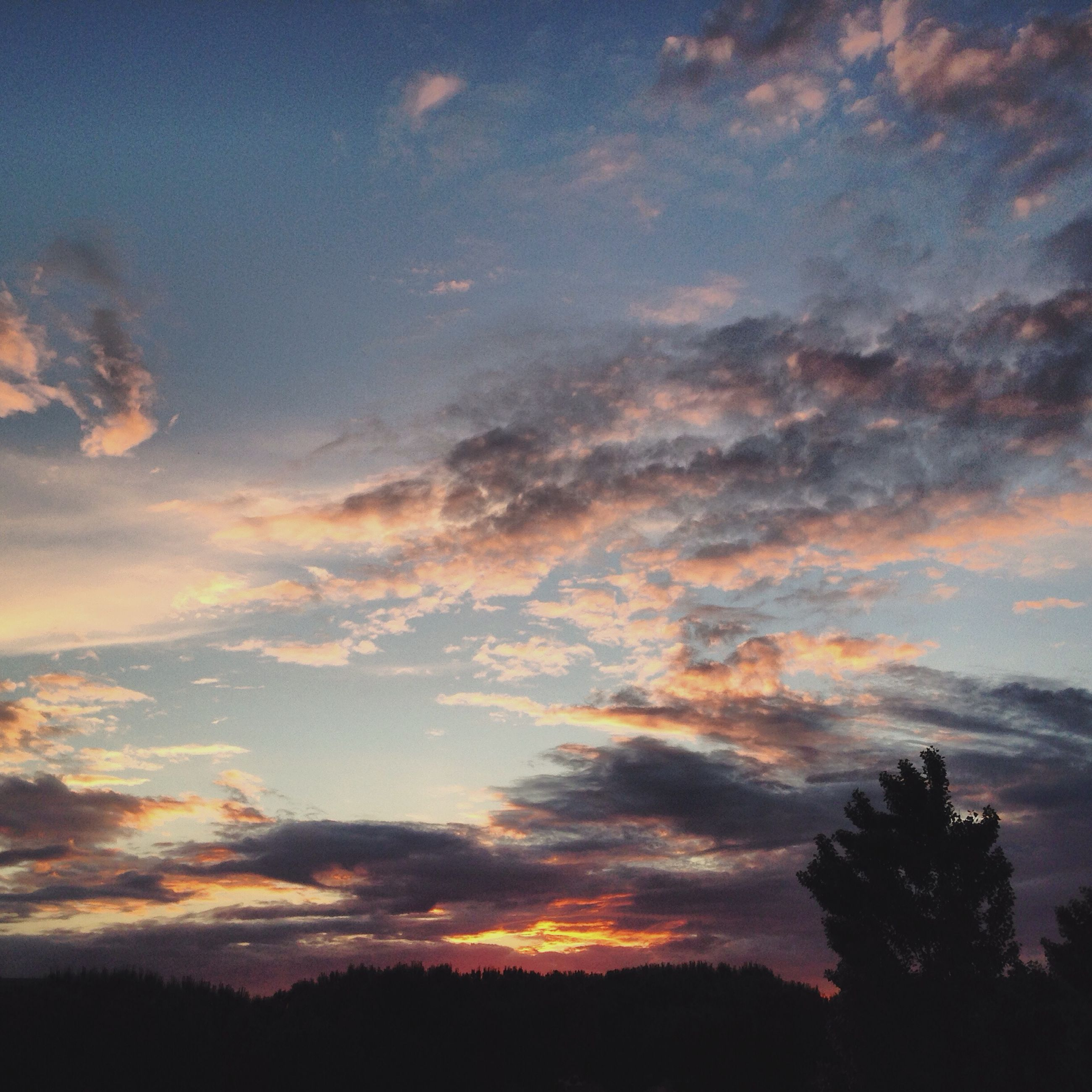 sunset, silhouette, sky, scenics, tranquility, beauty in nature, tranquil scene, cloud - sky, tree, nature, idyllic, orange color, dramatic sky, cloud, low angle view, cloudy, landscape, outdoors, no people, dusk