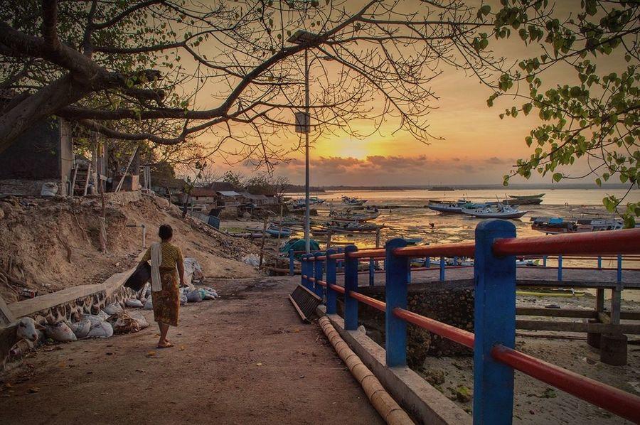 Infonesia Maringkik INDONESIA EyeEm INDONESIA Lombok Eyemphotography Humaninterest Sunset