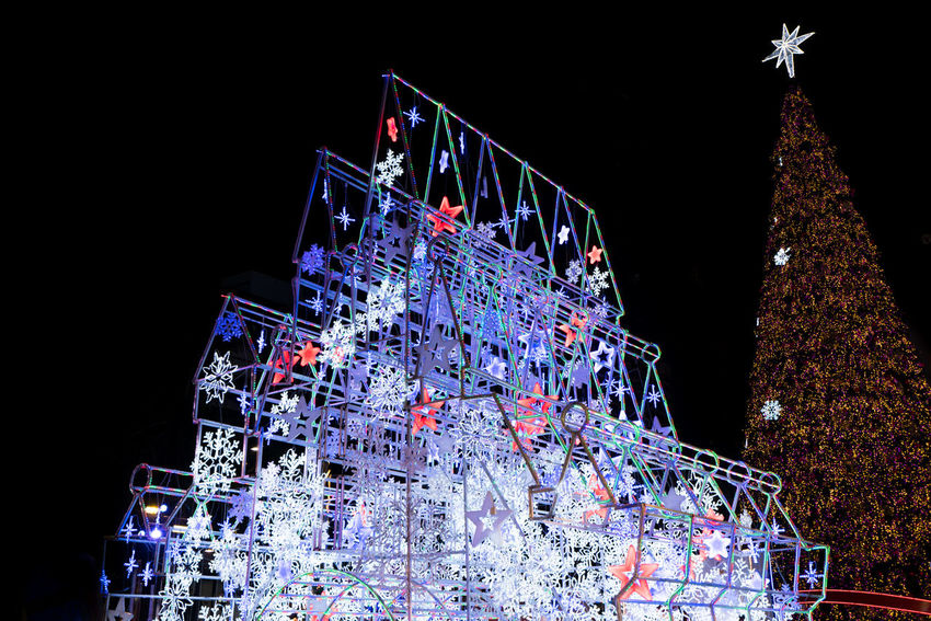 Castle and Christmas Tree at Central World Bangkok Architecture Castle Christmas Christmas Decorations Christmas Lights Christmas Tree Light Outdoors Stars