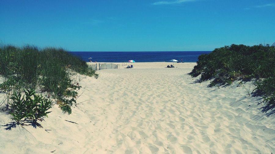 Summer Days Hamptons South Hampton, NY Water Clear Sky Sea Marram Grass Beach Wave Blue Sand Surf Seascape Sandy Beach Beach Holiday