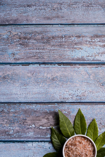 Directly above shot of leaves on wooden wall