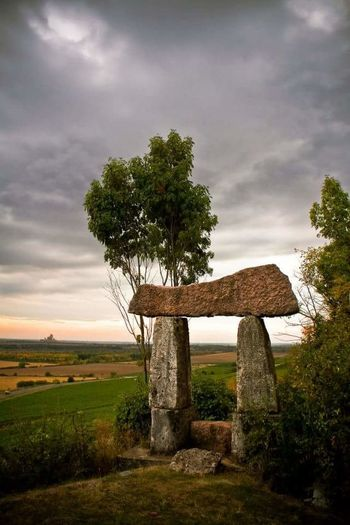 Tree Nature No People Sky Landscape Outdoors Day Stone Stone Art
