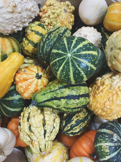Gourds Healthy Lifestyle Food And Drink Fall Large Group Of Objects For Sale Vegetable Freshness Healthy Eating Market Variation High Angle View Colorful
