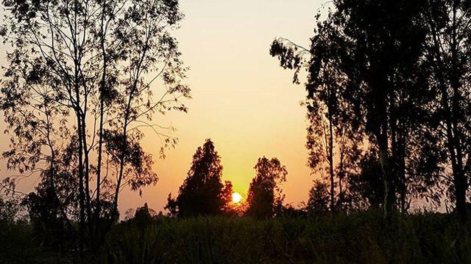 So All U need.......is....imagination Kopmagic Kolhapurdiaries Kolhapuris MyClick Imagination Awsmview Sunset SamsungS6 Phonography  😙😍💪 On The Way