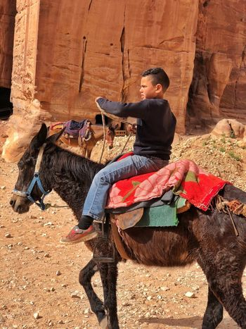 Donkeys and horses at Petra. Young boy helping his family's business. Petra Horse Donkey Real People Sunlight One Person Full Length Nature Day Land Lifestyles Males