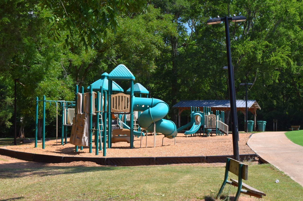 tree, plant, playground, park, park - man made space, nature, day, sunlight, empty, green color, absence, outdoor play equipment, seat, childhood, slide, slide - play equipment, outdoors, growth, swing, jungle gym