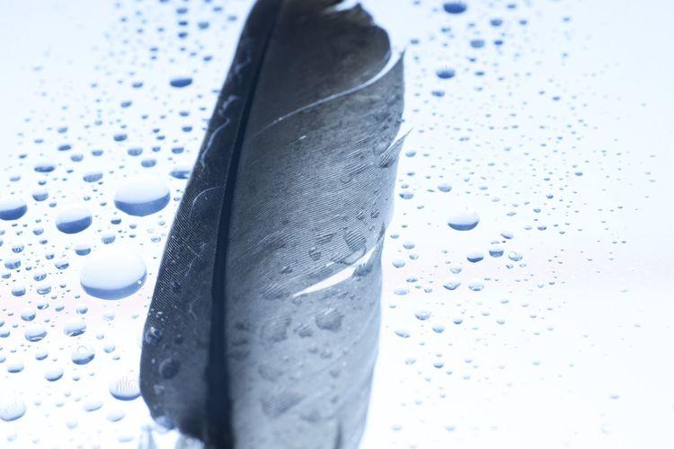 High angle view of wet metal