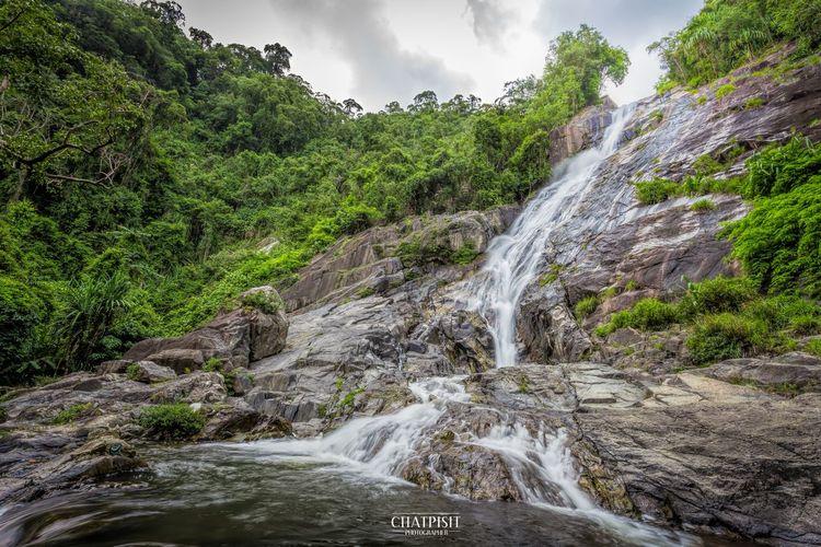 Waterfall Walk Landscape