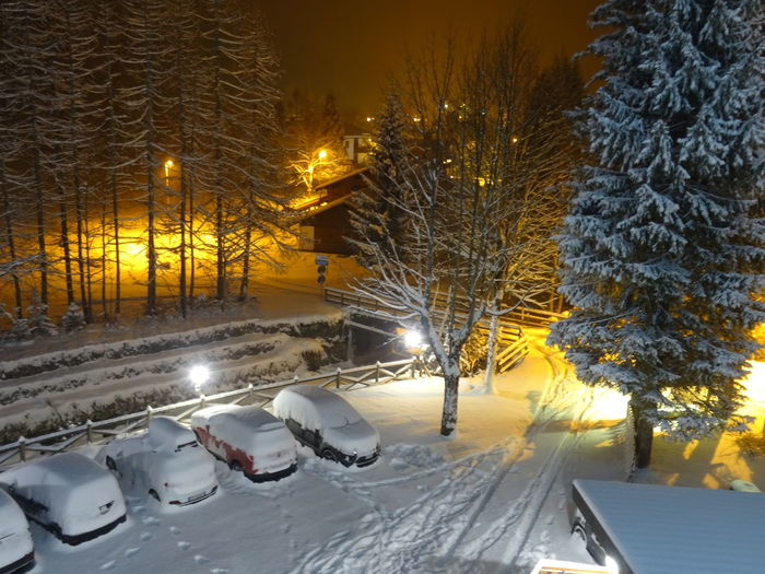 Notte di neve