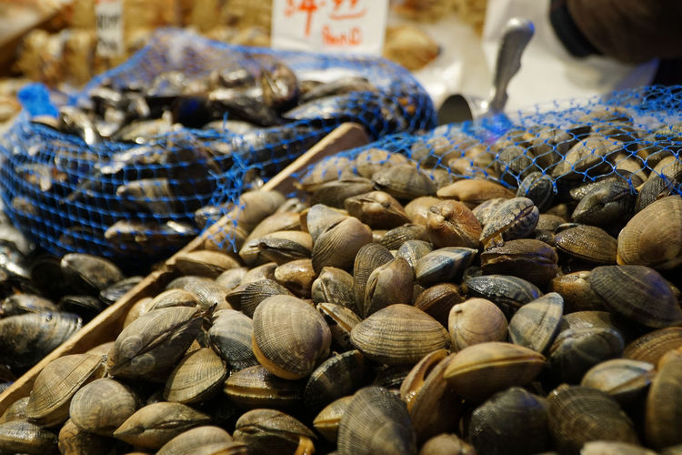 Close-up of shells for sale at market