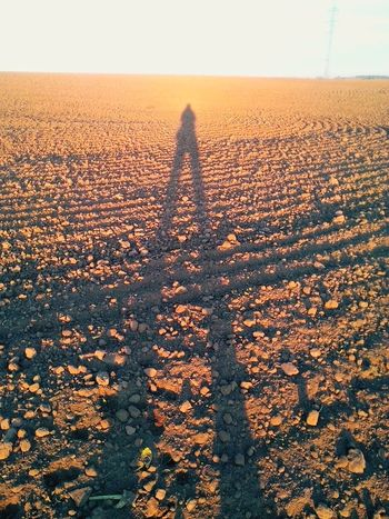 Shadow Shadow Of Me Land Loam Field