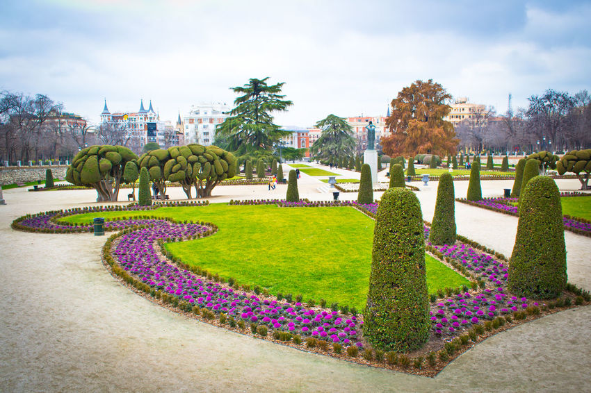 Culture Day Flovers Footpath Formal Garden Garden Grass Green Green Color Growth Holiday Lawn Lush Foliage Madrid Melancholic Outdoors Park Park - Man Made Space Plant Residential District Retiro SPAIN Tree Tropical Climate Walking Around