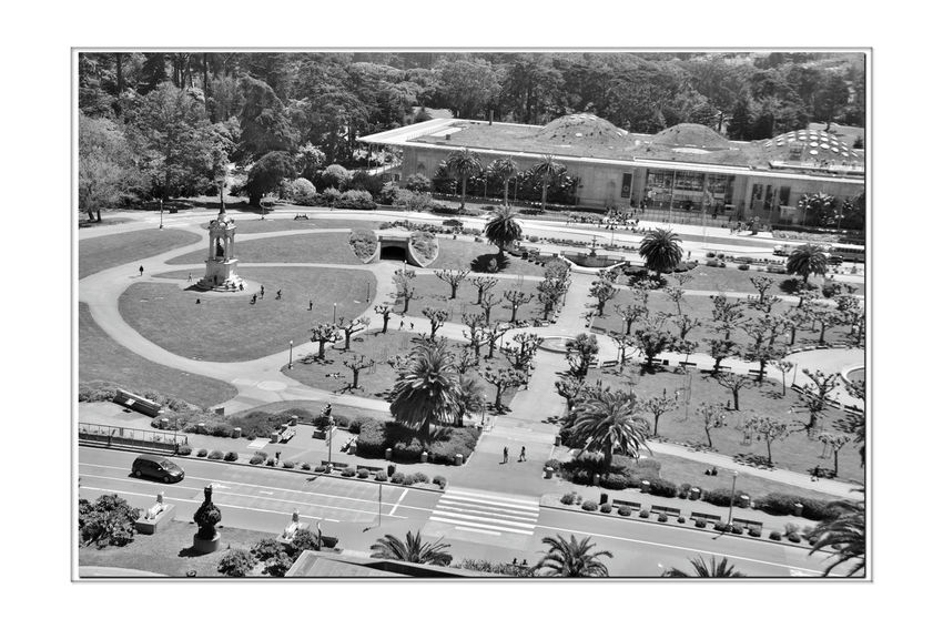 DeYoung Museum _ Observation Tower 9 San Francisco CA🇺🇸 Golden Gate Park 144 Ft. Observation Tower DeYoung Museum 8th Floor Bnw_friday_eyeemchallenge Open-Air Plaza Fine Arts Museum Architecture ModernBuilt 2005 Replaced 1895 Original Building Damaged By 1989 Loma Prieta Earthquake Museum District Academy Of Arts & Sciences Historic Statues Music Concourse Monochrome Monochrome_Photography Pollarded Trees Black & White Black & White Photography Black And White Black And White Collection