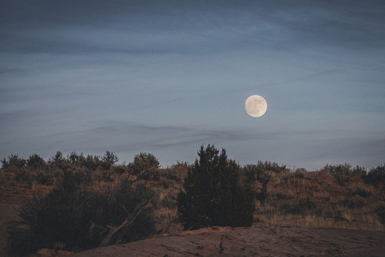 Scenic view of moon against sky