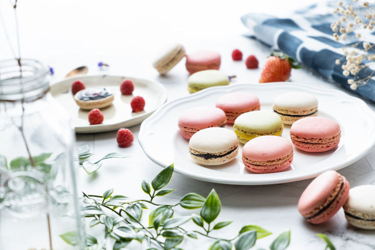 Sweet Food Sweet Dessert Food Food And Drink Macaroon Indulgence Table Freshness Temptation Still Life Indoors  Baked Cake Ready-to-eat Unhealthy Eating No People Plate Choice Variation