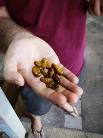 The silkworms were a little too moist in the middle for my taste. Too chewy. Bugs