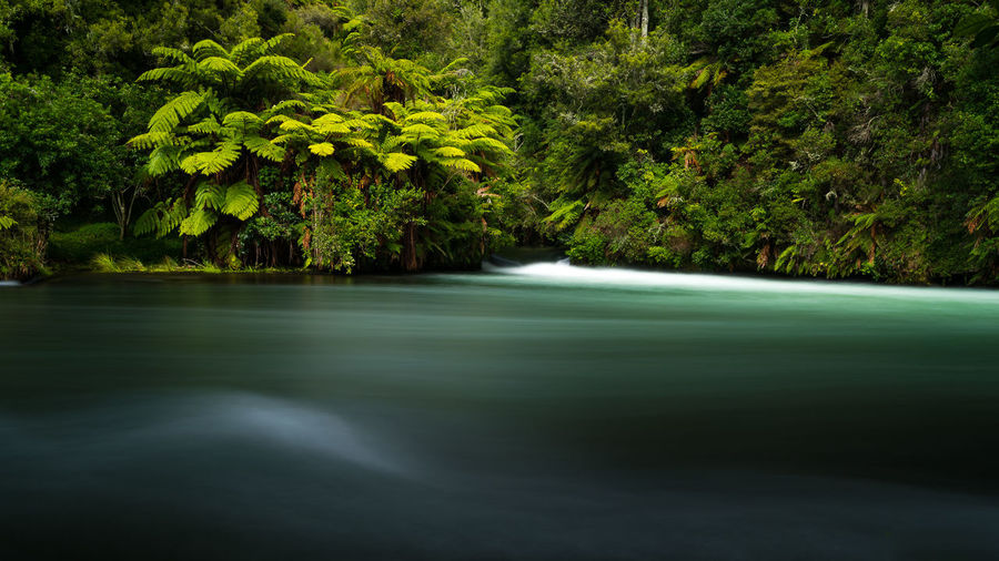 Long exposure abstract shot of Okere Falls, New Zealand. Beauty In Nature Flow  Forest Landscape Long Exposure Lush Foliage Lush Vegetation Motion Movement Nature New Zealand Outdoors River Scenics Stream Summer Travel Travel Destinations Water Waterfall Woods