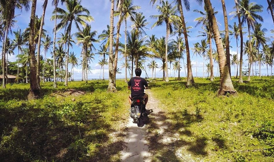 It's more fun in the Philippines! The Great Outdoors - 2017 EyeEm Awards Lost In The Landscape Connected By Travel EyeEmNewHere Beach Motorcycle Palm Trees Palm Tree Philippines Siargao Itsmorefuninthephilippines Love Cloud 9 Second Acts Philippines Photos Motor Motorbike Motorcycle Photography Ocean View Beauty In Nature Beachphotography Beach Day ASIA Gopro Perspectives On Nature Be. Ready. Perspectives On People EyeEm Ready   An Eye For Travel The Traveler - 2018 EyeEm Awards Summer Road Tripping My Best Travel Photo A New Beginning Moments Of Happiness It's About The Journey