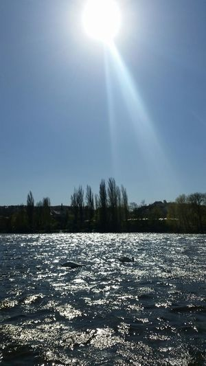 Naplavka Prague Praguepanorama Water Vltava View Of The Vltava Sun Swan Relaxing Hello World