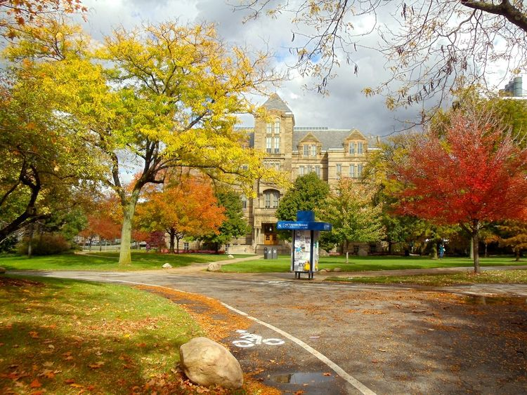 University Campus University Cwru Case Western Reserve University Fall Beauty Fall Colors Fall Leaves Cleveland Ohio, USA Campus Life