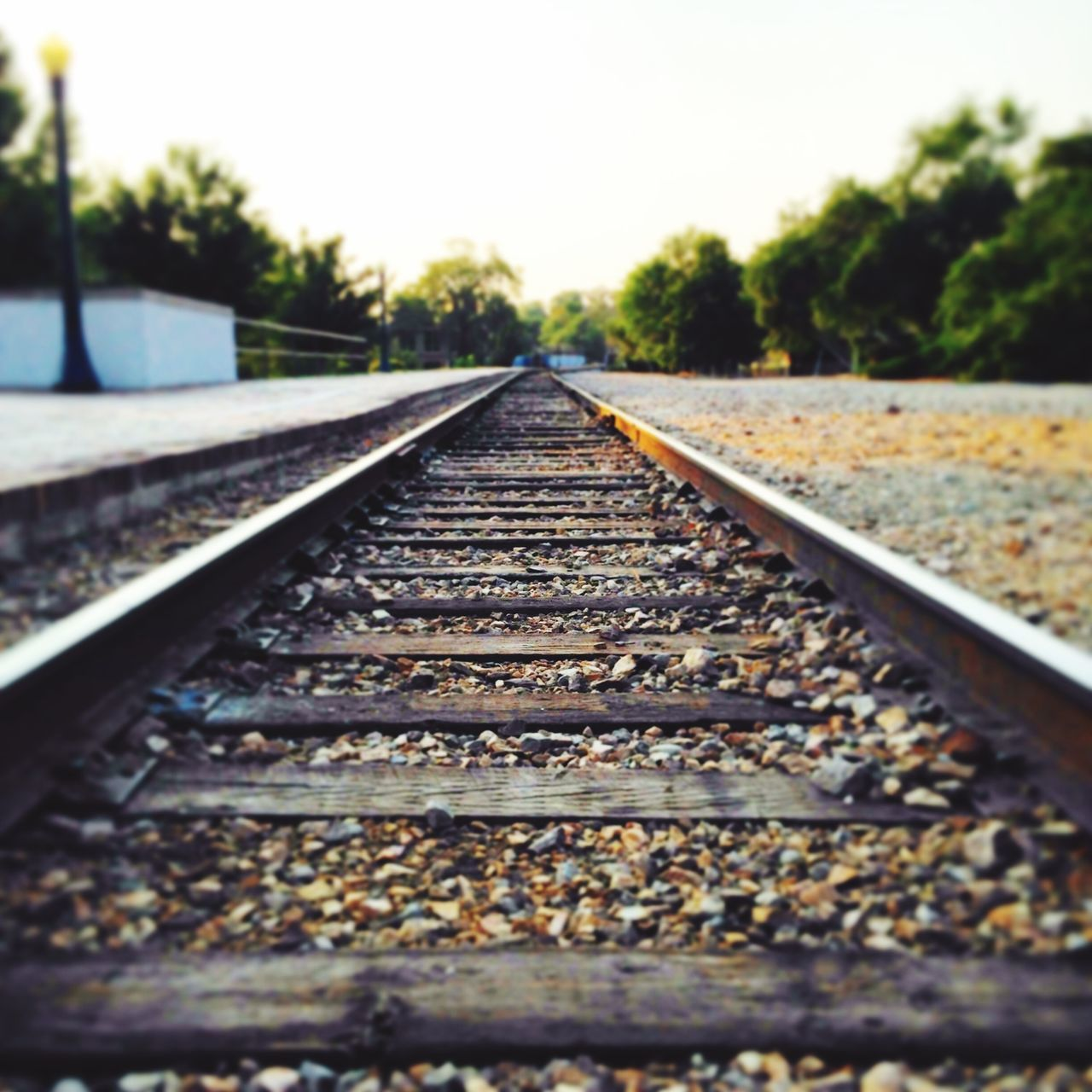 railroad track, rail transportation, transportation, diminishing perspective, the way forward, surface level, railroad tie, no people, metal, day, tree, straight, outdoors, landscape, clear sky, nature