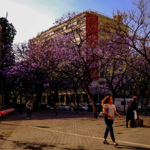 Tree Flower Two People Walking Springtime Outdoors Young Women Hello World Raval Tour-thecity.com Hanging Out Travel Photography Music Brings Us Together Primavera2017 Lifestyles The Street Photographer - 2017 EyeEm Awards
