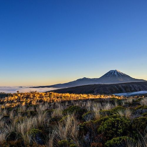 LYL. Beneath Mt Ruapehu looking across to Ngauruhoe (I keep spelling it wrong), above the morning layer of fog, I got to watch this thin strip of light move and grow. Landscape Natureseekers Nature Photography photo NewZealand mountains amazing wilderness nature_obsession_landscape beautiful_day_love igdaily photooftheday instanaturelover beautiful scenery bestoftoday