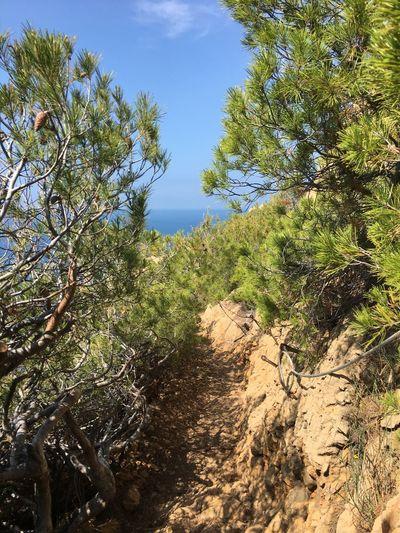 Un petit passage de randonnée