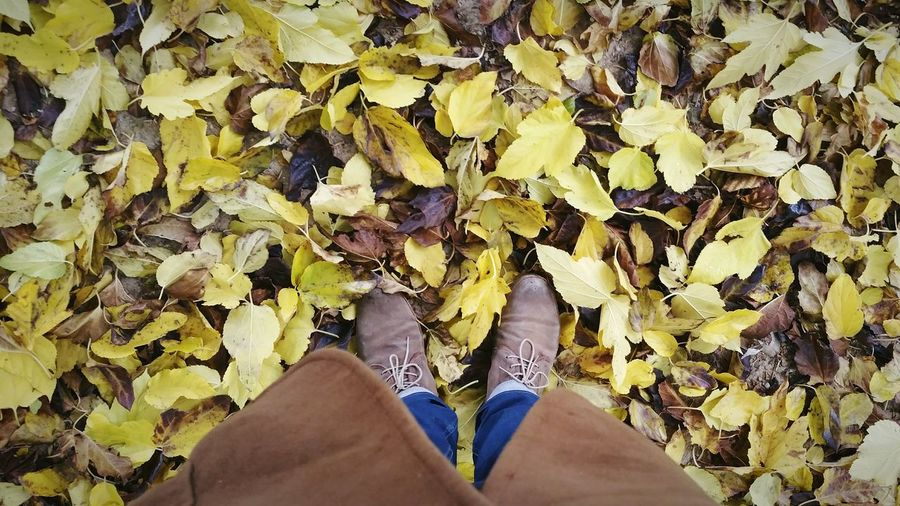 Low Section Of Man Wearing Shoes While Standing On Dried Leaves