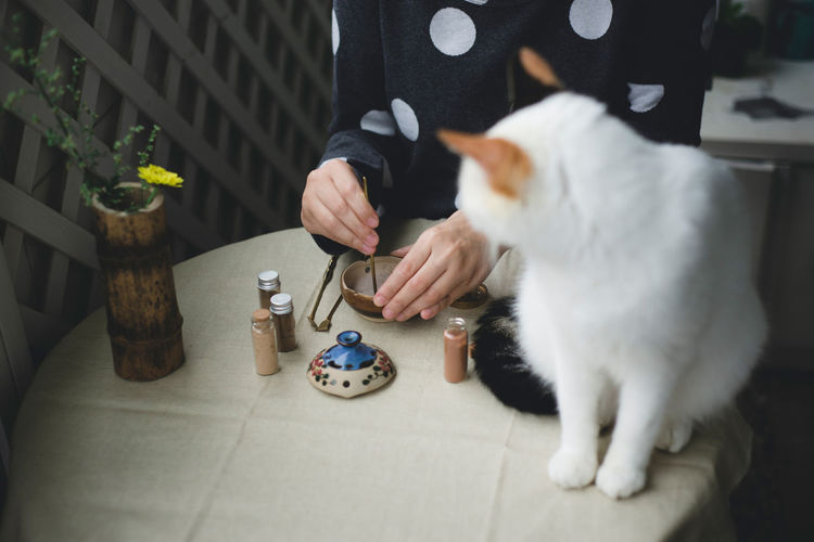 Cat looking at woman making powdered japanese tea on table