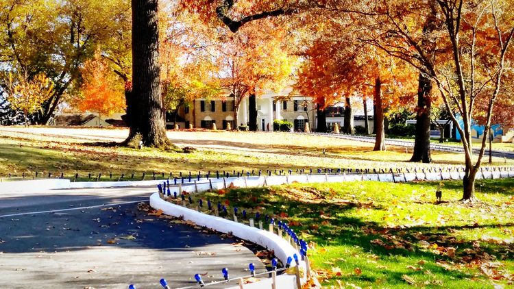 Fall Beauty Fall Colors Elvispresley Mansion