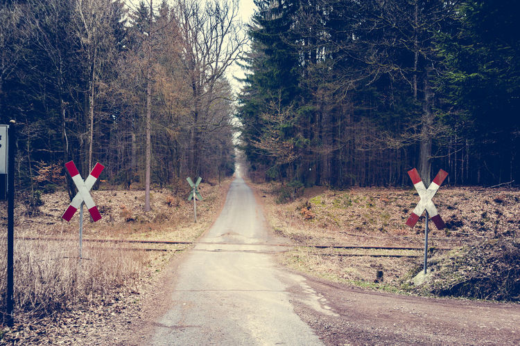 Railroad Crossing Diminishing Perspective Eiserne Hand Forest Forest Path Full Length Germany Hessen Landscape Mountain Nature Plant Railroad Railroad Crossing Railroad Crossing Sign Saltire Taunus The Way Forward Tranquility Tree Vanishing Point