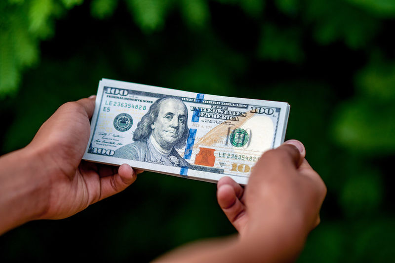 Cropped hands holding paper currency against plants