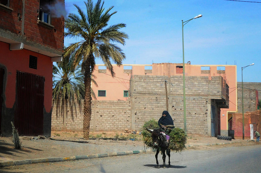 My Commute Donkey Rides Donkey Time Donkey Taking Photos From Where I Stand Travel Photography Localscene Local Culture Localphotography Transportation Old Lady Old Woman - Morocco Africa Miles Away