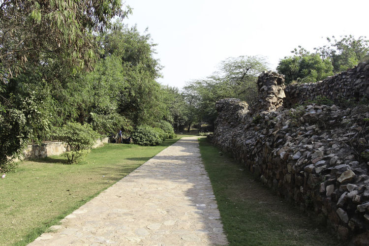 These are the ruins of the medieval Siri Fort in South Delhi, with a section of wall being visible and the stones that make up the wall, although this section of the wall surviving the centuries is pretty short. The fort was built by Alaudin Khilji to defend the core of his kingdom, primarily against the Mongols who were attacking the area. The fort helped in protection. In addition, the location of Siri where the supposed incident happened where the defeated Mongol army was brought and killed by trampling. These ruins are near Panchsheel Park and are set among greenery, the wall being many centuries old and yet standing firm in sections such as this. There is a paved walking path next to the wall, and greenery all around. Beauty In Nature Day Delhi Grass Green Green Color Greenery Growth India Medieval Fort Medieval Structures Nature No People Outdoors Path Paved Path Plant Plant Plants Siri Fort Siri Fort Ruins Stone Wall Tree Walking Path Wall