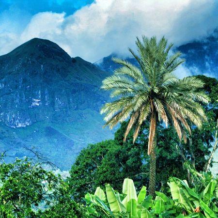 Morogoro   Tanzania . . . Traveling MyTanzania Mountain Green Discover255 255 TanzaniaZalendo Vscotanzania Vscocam Skyhunter Karibu Visiterlafrique Afrique Africa