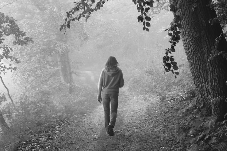 Rear View Of Woman Walking On Pathway In Forest During Foggy Weather