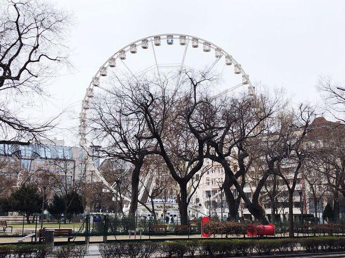 Ferry's wheel Budapest Budapest, Hungary Sky Amusement Park Tree Architecture Nature Built Structure Amusement Park Ride Ferris Wheel Building Exterior