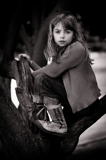 Casual Clothing Climbing Trees Dark Blonde Day In Tree Leisure Activity Lifestyles Looking At Camera Natural Portrait Natural Portrait Of Girl In Tree Nature Outdoors Playing Outdoors Portrait Portrait Of Young Girl Pretty Girl White Girl