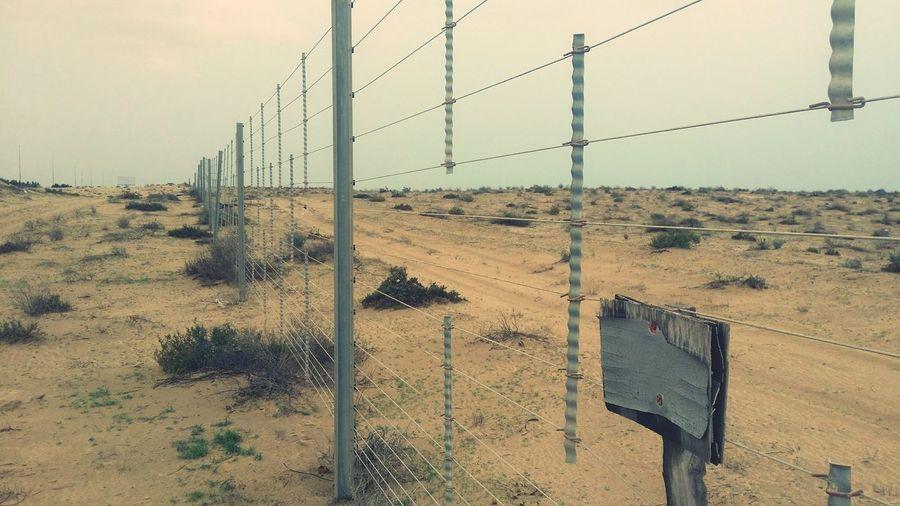 Kiomi Collection Fences Taken By Me Desert Fence Desert Life Fencepost Fence Sand Eye4photography  EyeEm Best Edits Desert Plants Simple Beauty EyeEm Gallery Desert Sandy Dubai UAE