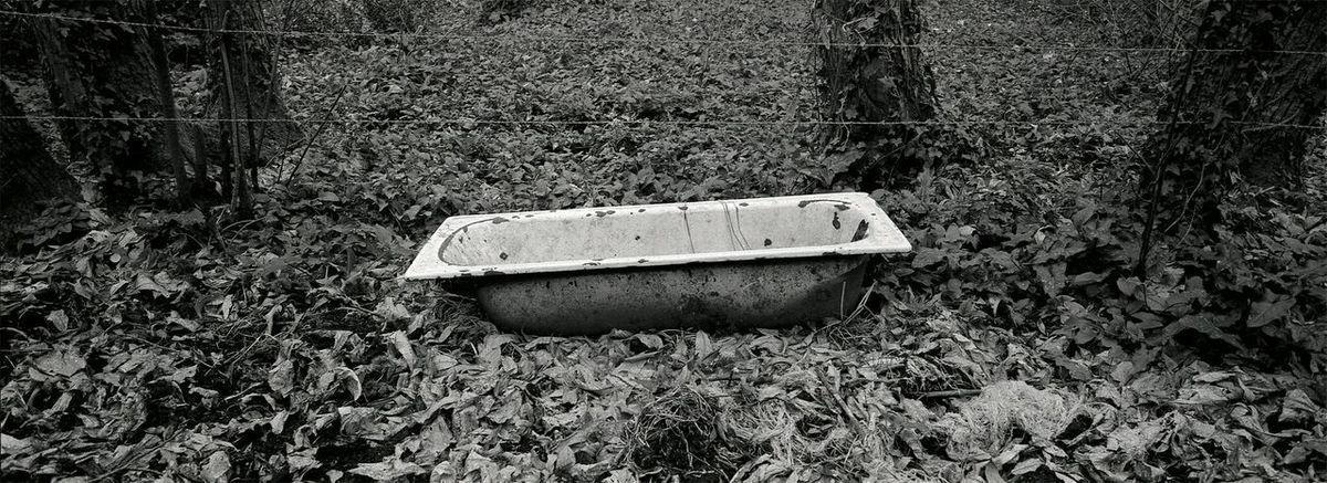 Hasselblad Xpan Kodak Tri-X 400