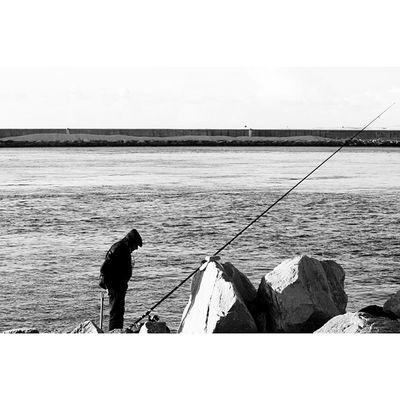 #igers #igers_porto #igersportugal #portugal_de_sonho #portugal_em_fotos #portugaloteuolhar #portugaldenorteasul #aveiro #cp #estacao #iphone5 #iphonesia #iphoneonly #iphonegraphy #iphonephotography #instagram #instalove #instagramers #instagramhub #muro Instagramhub Barra Praiadabarra Beach Instalove Farol Lighthouse Iphonegraphy Igersportugal Portugal Igers_porto Iphoneonly Cp Iphonesia Portugaldenorteasul Instagram Estacao IPhone5 Iphonephotography Pescador Portugaloteuolhar Igers Portugal_em_fotos Aveiro Ig_portugal Muro  Portugal_de_sonho Instagramers