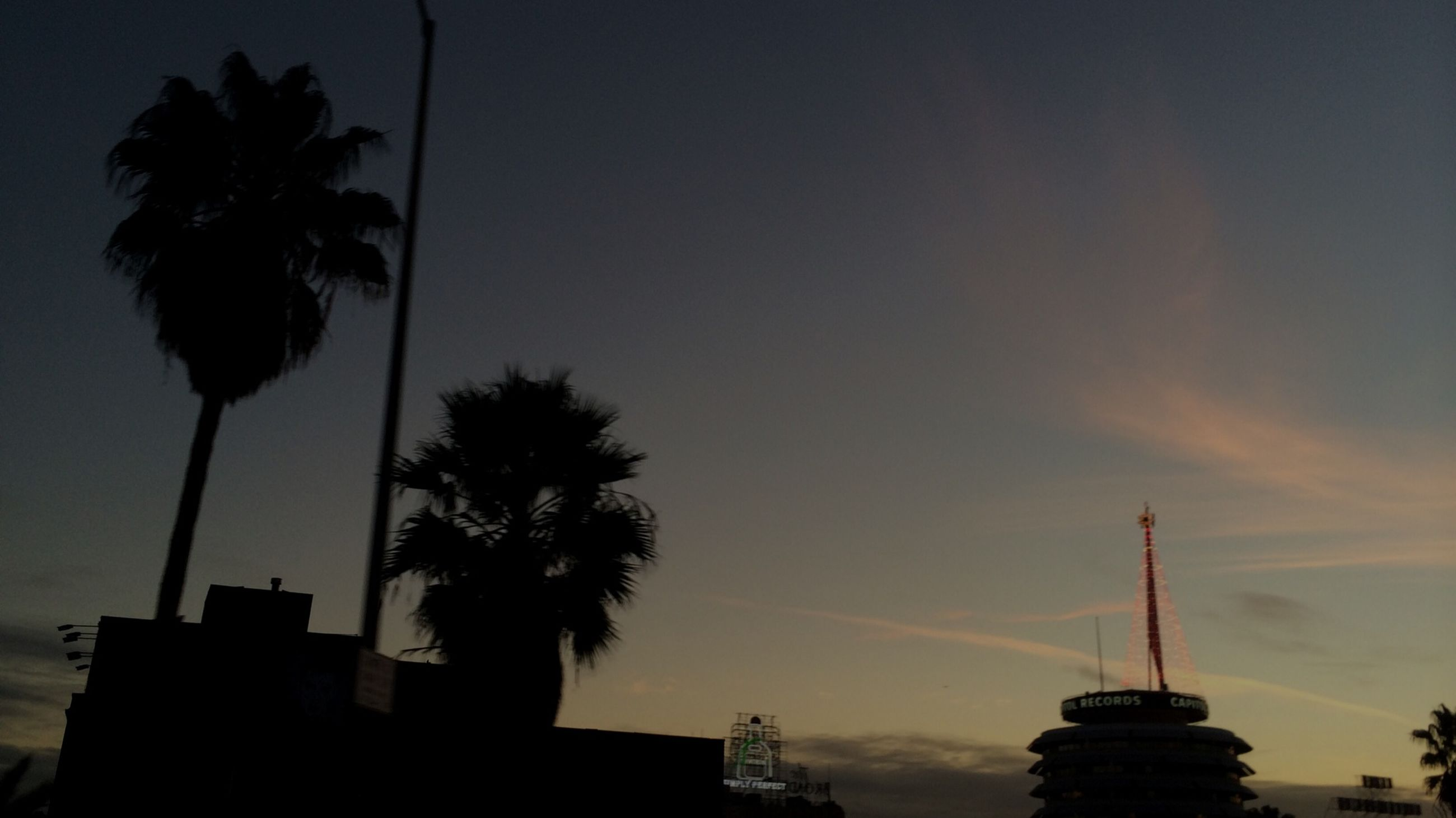 silhouette, palm tree, low angle view, sky, tree, sunset, built structure, dusk, building exterior, architecture, outline, nature, cloud - sky, growth, tall - high, outdoors, no people, street light, beauty in nature, copy space