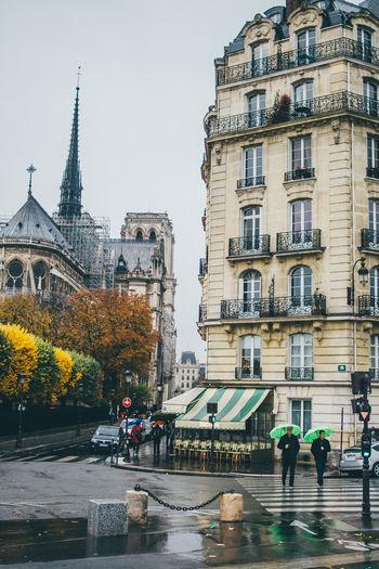 Paris Notre Dame De Paris Autumn Fall Architecture City Building Exterior Built Structure Building Rain Wet