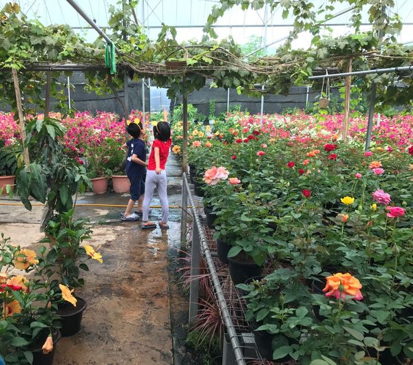Kids enjoying their outing. Two People Kids Cousins  Plant Nursery Growth Greenhouse Retail  Flower Plant Flower Market Kids Having Fun