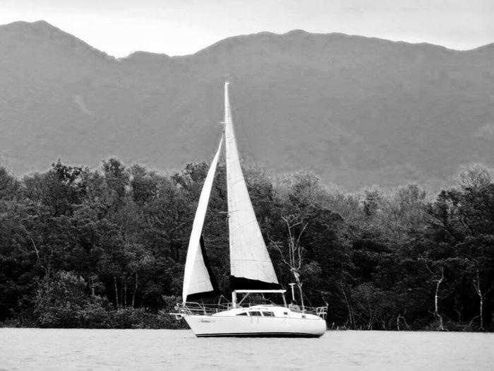 Sailing Boat bw Sailboat Sail Boat Sail Brazil Freedom Freedom Life