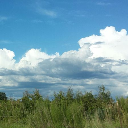 I love taking pictures of clouds! Most of my nature pictures include them:) Relaxing Enjoying Life Nature Clouds